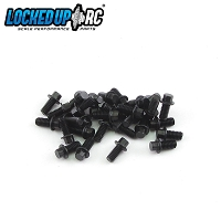 M2.5 x 5mm Scale Hex Bolts (30) Black