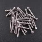 M2 x 14mm Scale Hex Bolts (30) SS