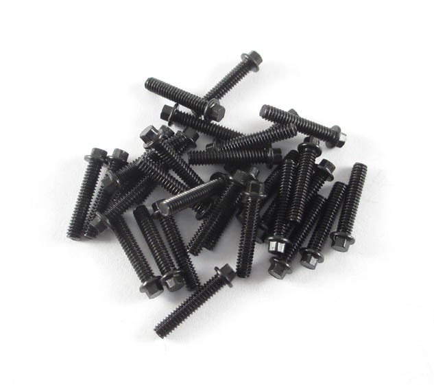M2 x 10mm Scale Hex Bolts (30) Black