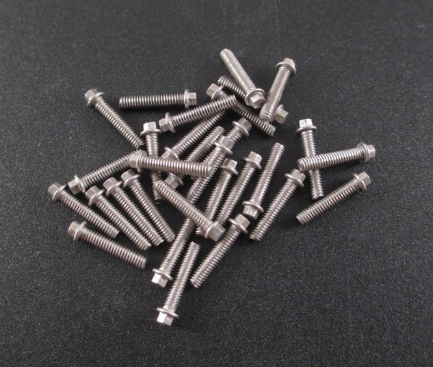 M2 x 10mm Scale Hex Bolts (30) SS