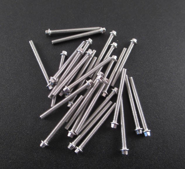 M2 x 21mm Scale Hex Bolts (30) SS