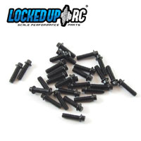 1-64 x .25 Scale Hex Bolts (30) Black