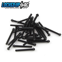 M2 x 17mm Scale Hex Bolts (30) Black