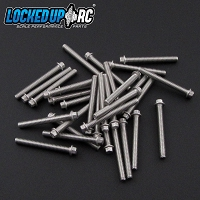 M2 x 17mm Scale Hex Bolts (30) SS